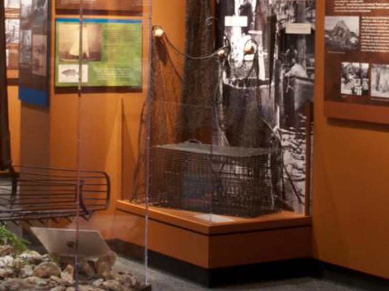 Museum Offers Artifacts Videos And Displays That Tell The In Depth Story Of Key Forces Shaped Development Central Coastal Region