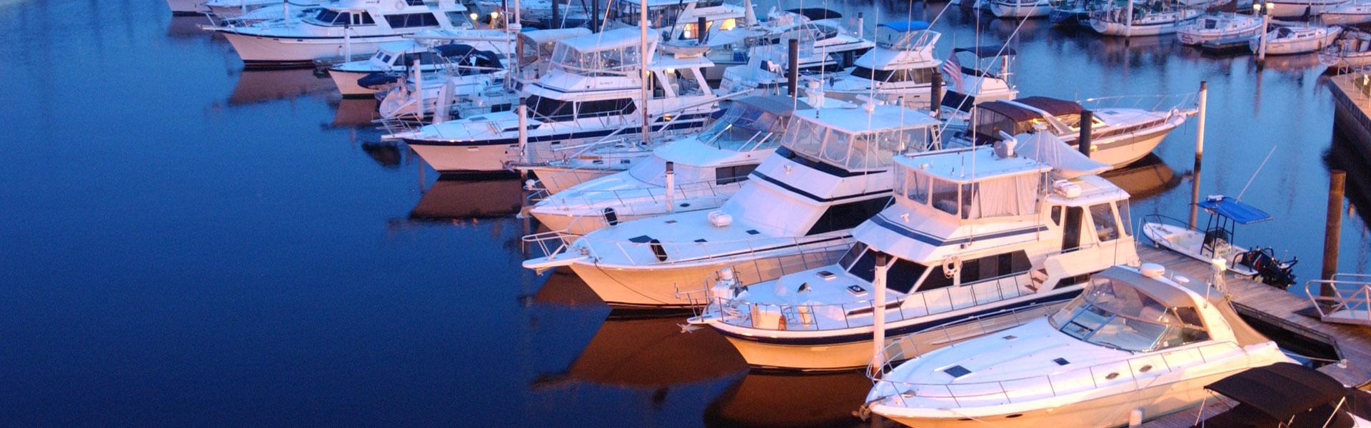 Cruise The Neuse Pontoon Boat Tours New Bern Nc