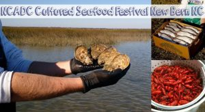 NC Cultured Seafood Festival @ New Bern-Craven County Convention & Visitor Center | New Bern | North Carolina | United States