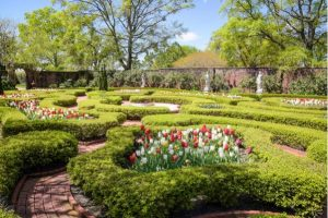 Spring Garden Lovers' Weekend @ Tryon Palace Grounds | New Bern | North Carolina | United States