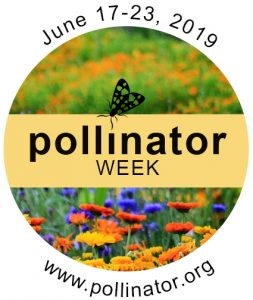Tryon Palace Celebrates National Pollinator Week @ Tryon Palace Gardens, North Carolina History Center, Cullman Performance Hall | New Bern | North Carolina | United States